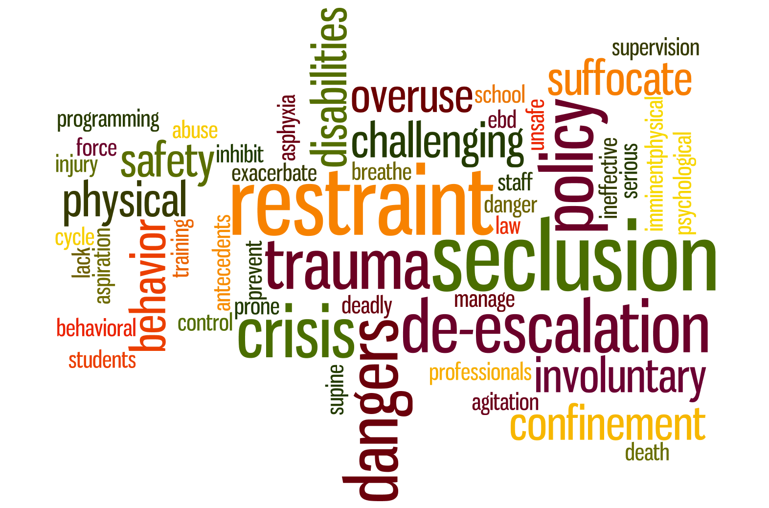 Physical Restraint & Seclusion Word Cloud
