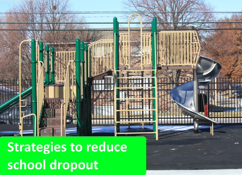 Reducing school dropout